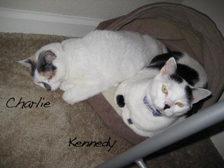 Charlie & Kennedy