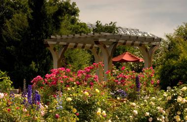 Rose Garden - Denver Botanic Gardens