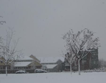 April Snow 2